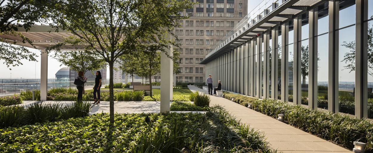 The green roof at 609 Main in Houston, Texas