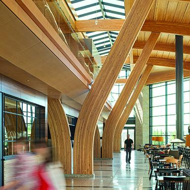 The exquisite interior design of ATCO Commercial Centre built with rich wood in the palette of deep earth tones.